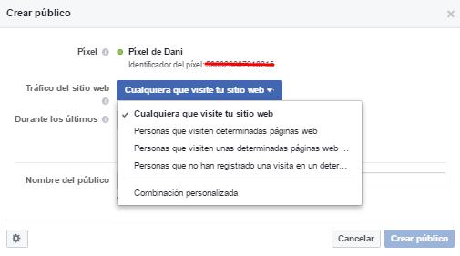 configurar publico personalizado pixel facebook